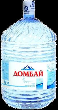 Домбай Ульген одноразовый бутыль